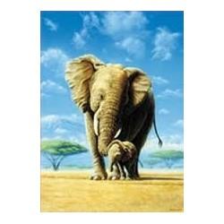 Puzzle Educa de 500 piezas Elefantes