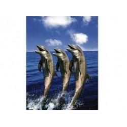 Puzzle Schmidt de 1500 piezas Delfines